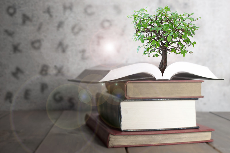 Tree growing from an open book with alphabet letters shadows on the wall